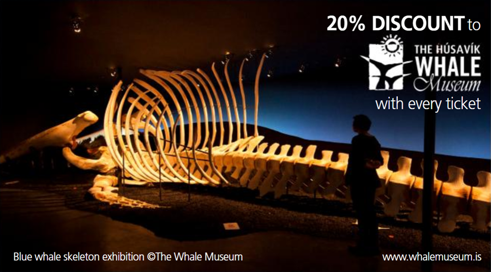 Húsavík Whale Museum, 20% discount with every ticket, Gentle Giants Whale Watching, Húsavík, Iceland