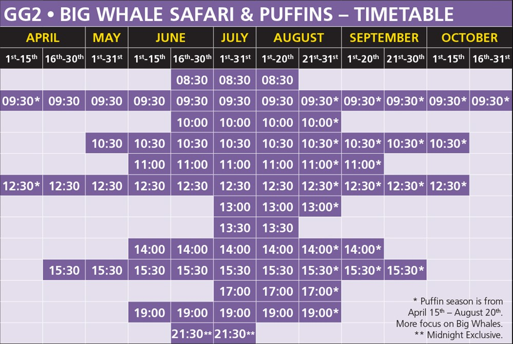 GG2 Big Whale Safari & Puffins Timetable Húsavík 2020
