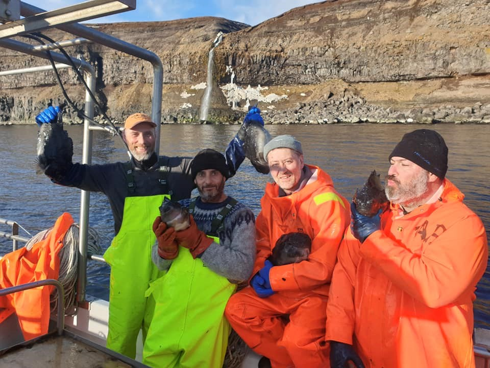 The successful lumpfish crew of Aþena - Gentle Giants Whale Watching Húsavík Iceland